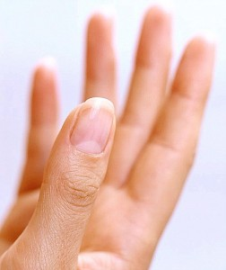 Finger Nails – why there is a white moon ? » Tarra Acupuncture